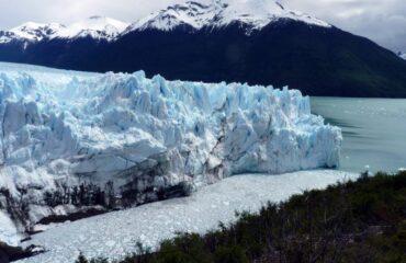 Calafate Perito Moreno
