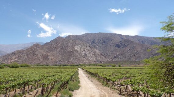 Argentina Norte Salta